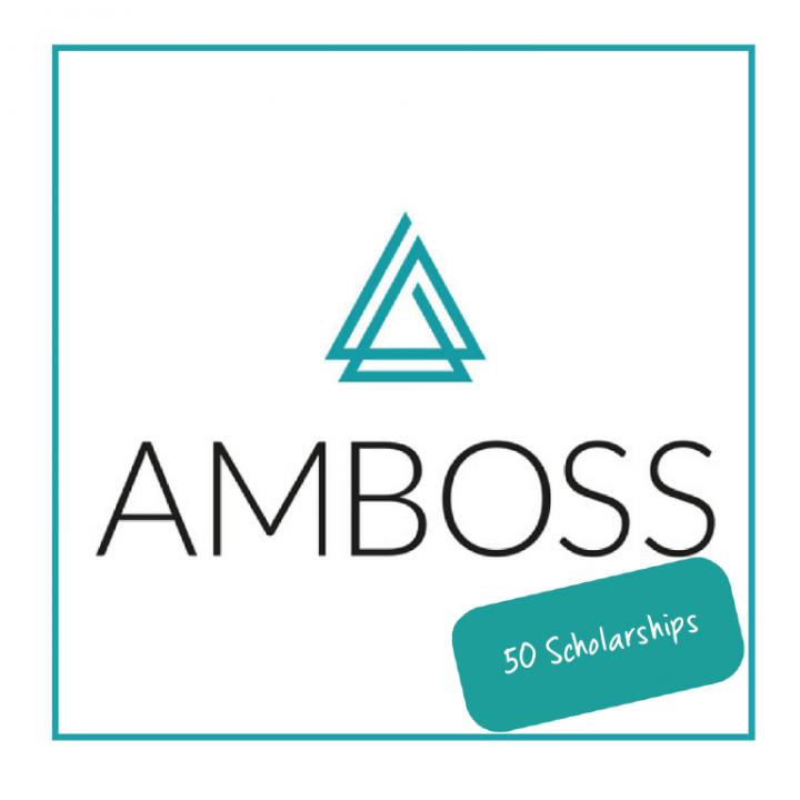 50 AMBOSS Стипендии